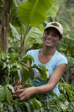 カウカのコーヒー生産者
