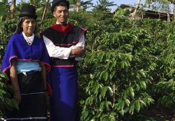コロンビアカウカ県、ミサク(ガンビアノス)と呼ばれる民族