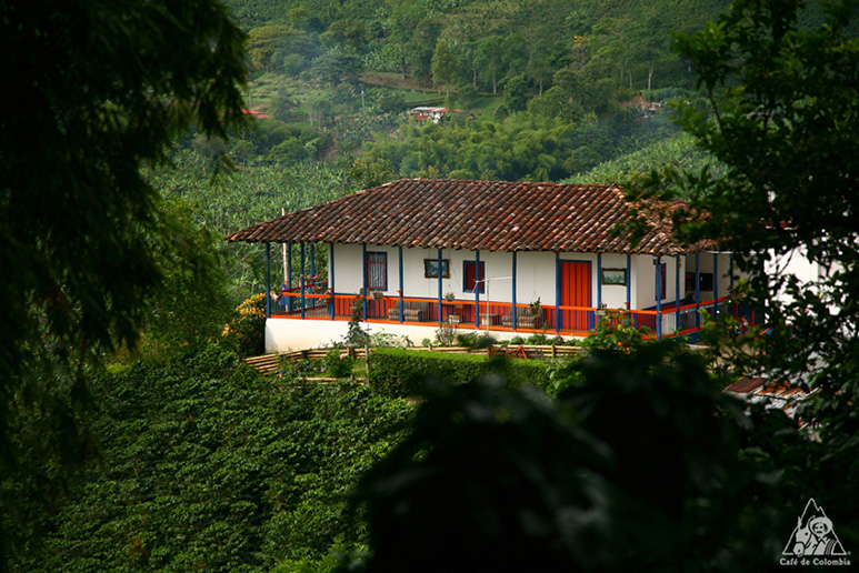 コロンビアコーヒーの産地、キンディオ(Quindio)