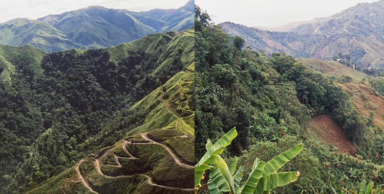 コロンビアコーヒーの産地、Caquetáカケタ