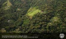 The世界遺産! コロンビアのコーヒー生産の文化的景観