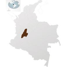 コロンビアコーヒーのトリマに注目!