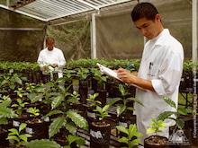 生物多様性とコーヒー生産について