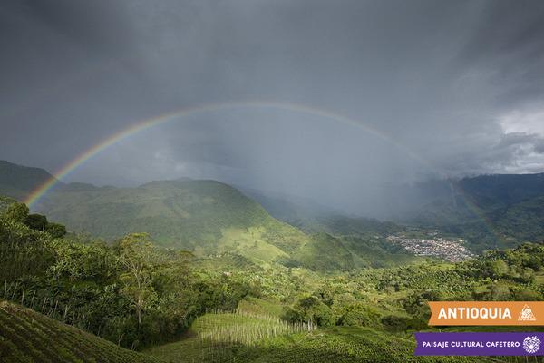 第一回『ワールド・コーヒー生産者フォーラム』 コロンビアで開催